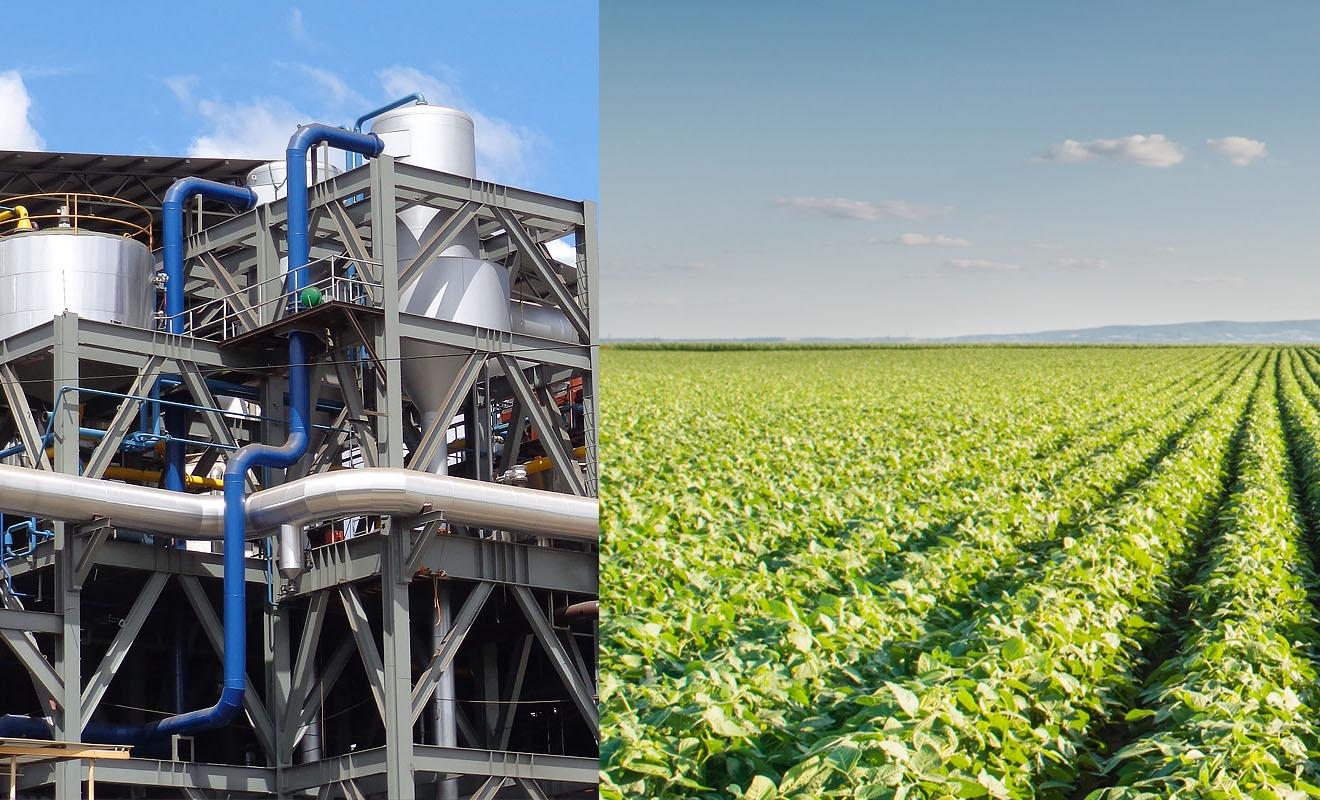 agroindustria02